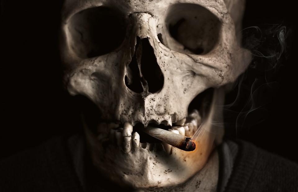 skull-and-crossbones-Jonny Lindner